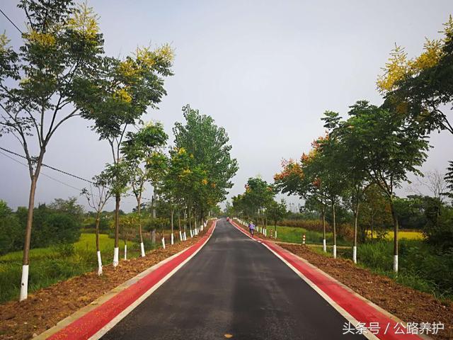 [宾川县]宾川县投资315万元实施美丽公路示范路建设